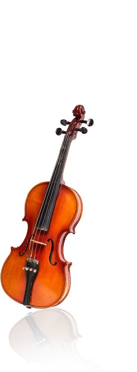 Illustration d'un violon